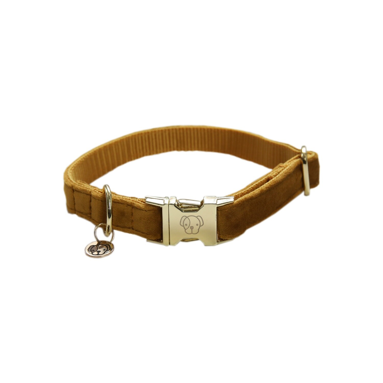 Kentucky Dogwear - Collier Velvet