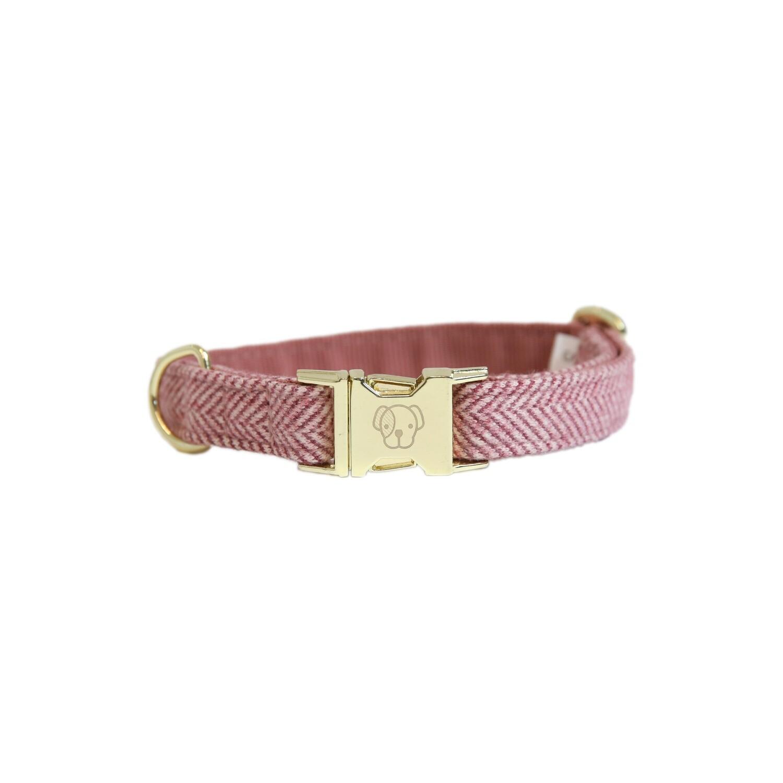 Kentucky Dogwear - Collier Wool