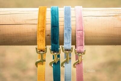 Kentucky Dogwear - Laisse Velvet