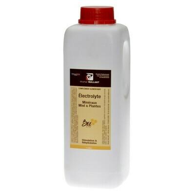 Michel Vaillant - Électrolytes minéraux, miel & plantes