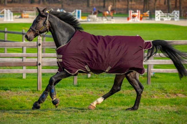 Horseware - Amigo Hero Ripstop