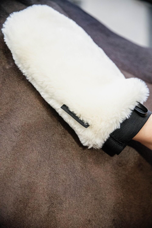 Grooming Deluxe - Gant de pansage