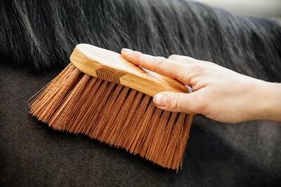 Grooming Deluxe - Bouchon à poils medium