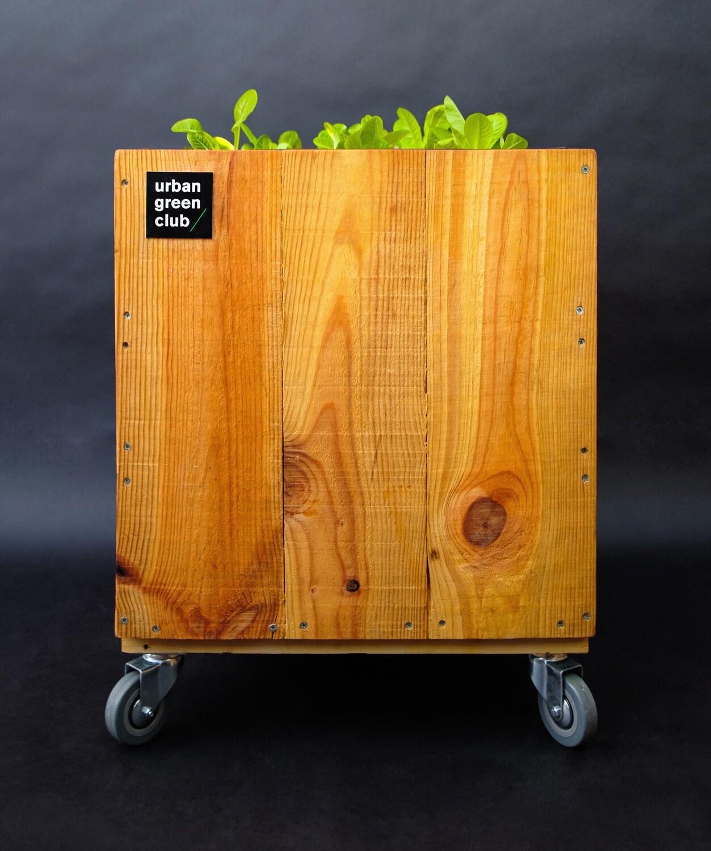 Urban Gardening Module