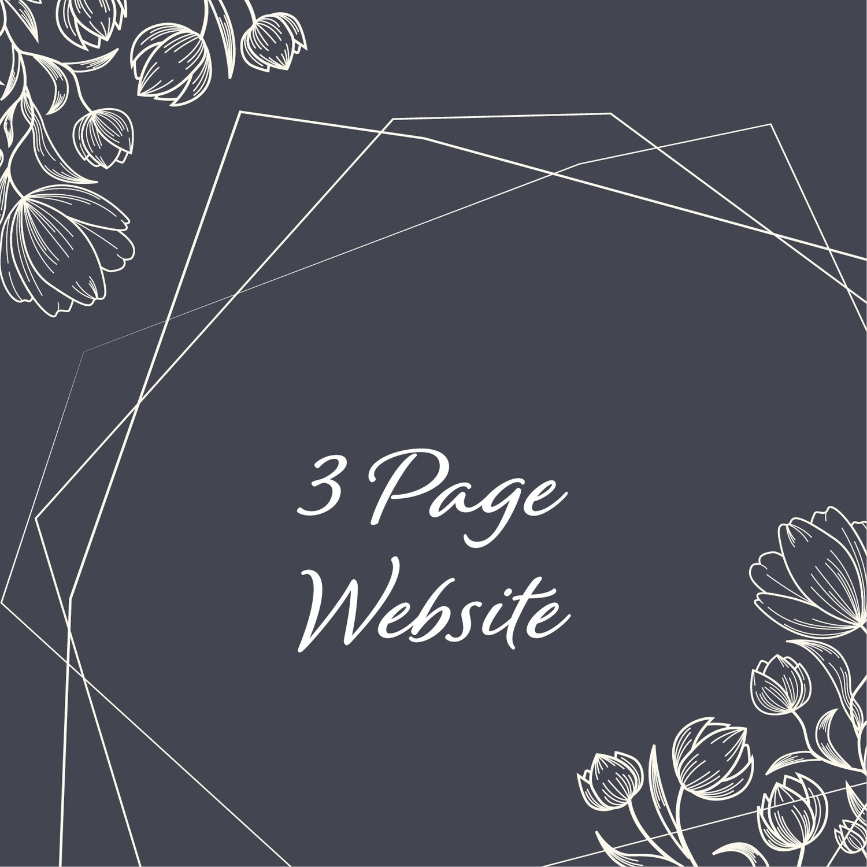 3 Page Website (Basic)