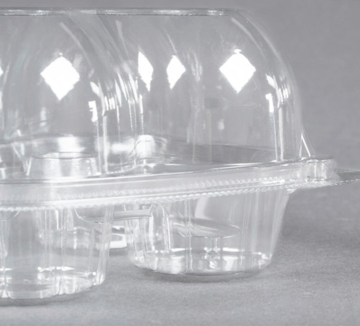 4 Cup High Dome Cupcake Container