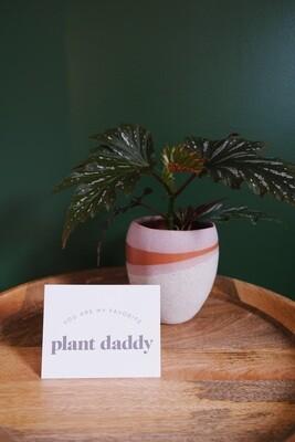 Plant Daddy Card