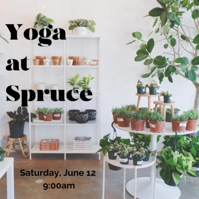Yoga with Plants!