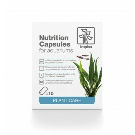 Nutrition Capsules