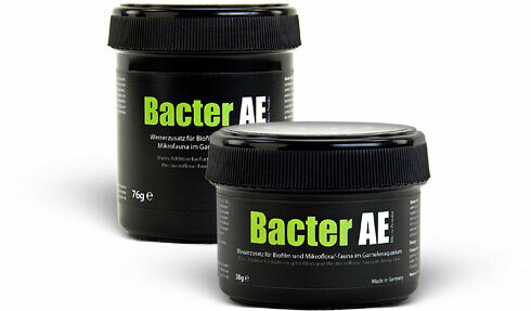 Bacter AE Micro Powder