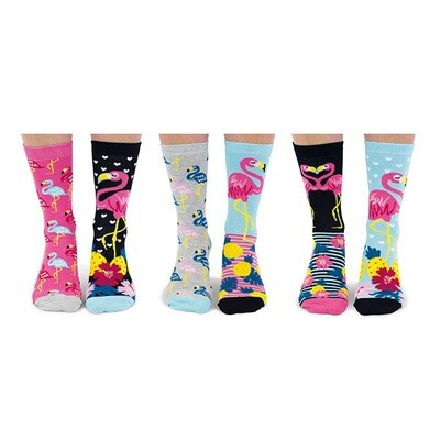 UNITED ODDSOCKS Go Flamingo