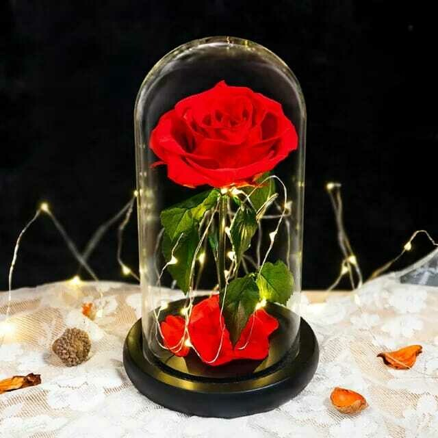 Eterfield Preserved Flower Rose in Glass Dome - Red