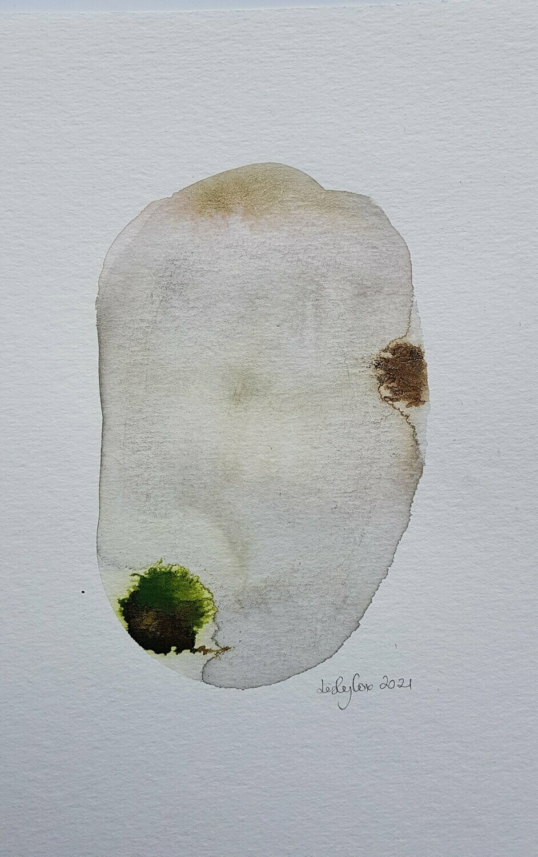 Greenstudy#1