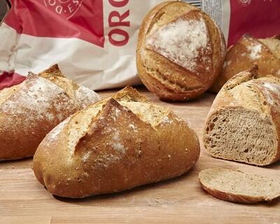 MALTHOUSE Loaf - organic malt flour-
