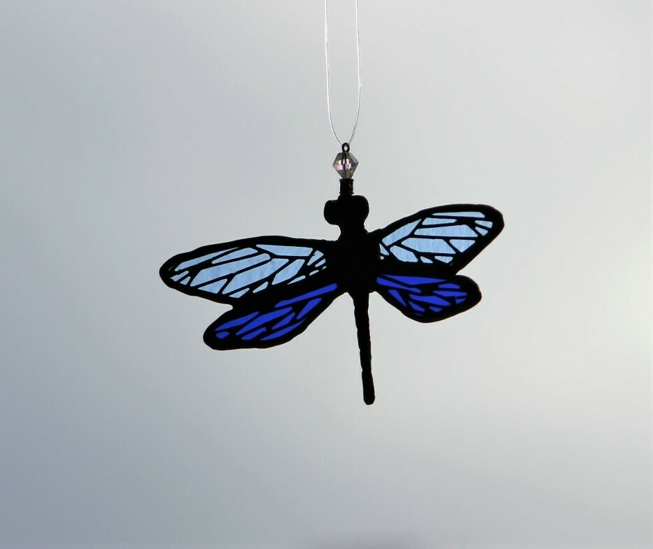 Blue Dragonfly with filigree on wings