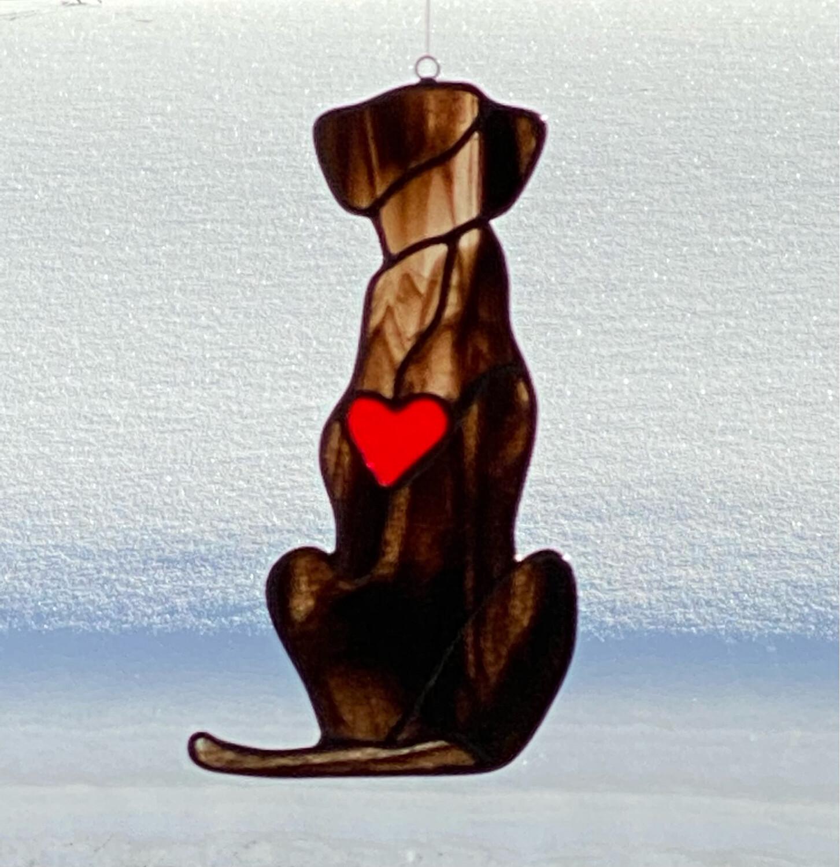 Dog: Bailey