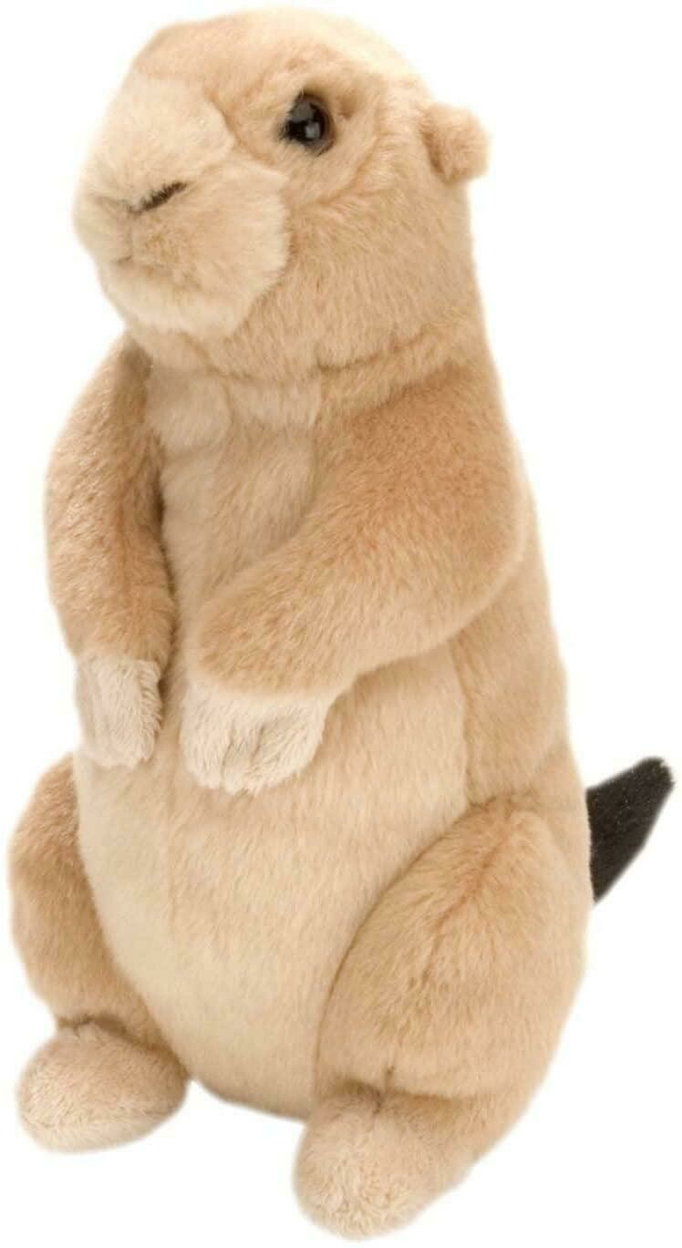 Mini Prairie Dog