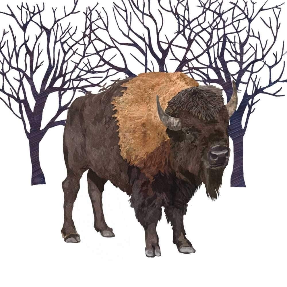 Winter Buffalo Lunch Napkins