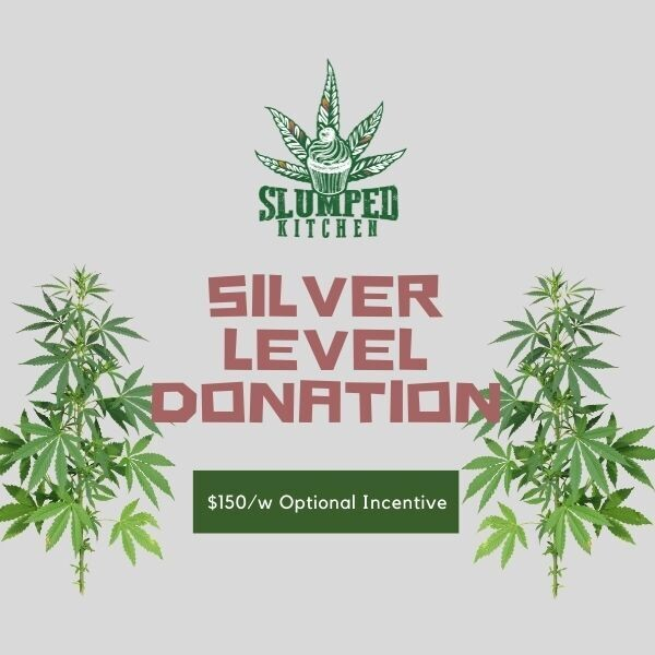 Silver Level Donation
