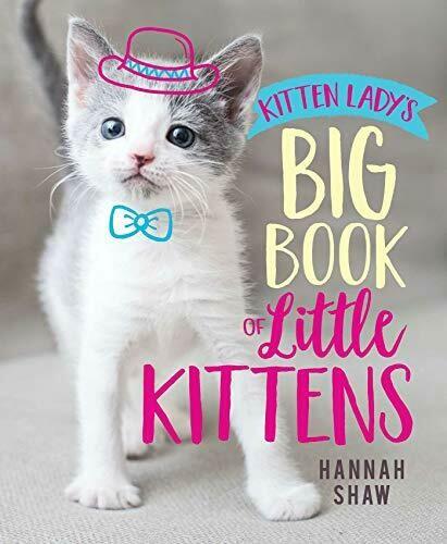 Shaw, Hannah- Big Book of Little Kittens