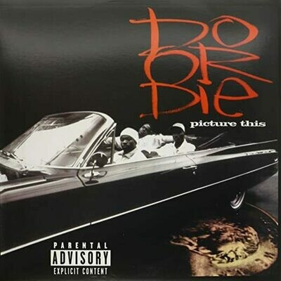 Do Or Die- Picture This LP