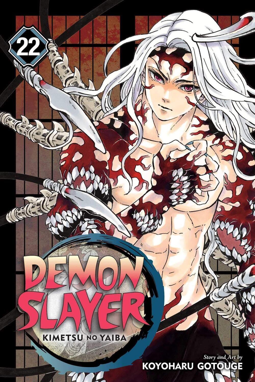 Demon Slayer 22