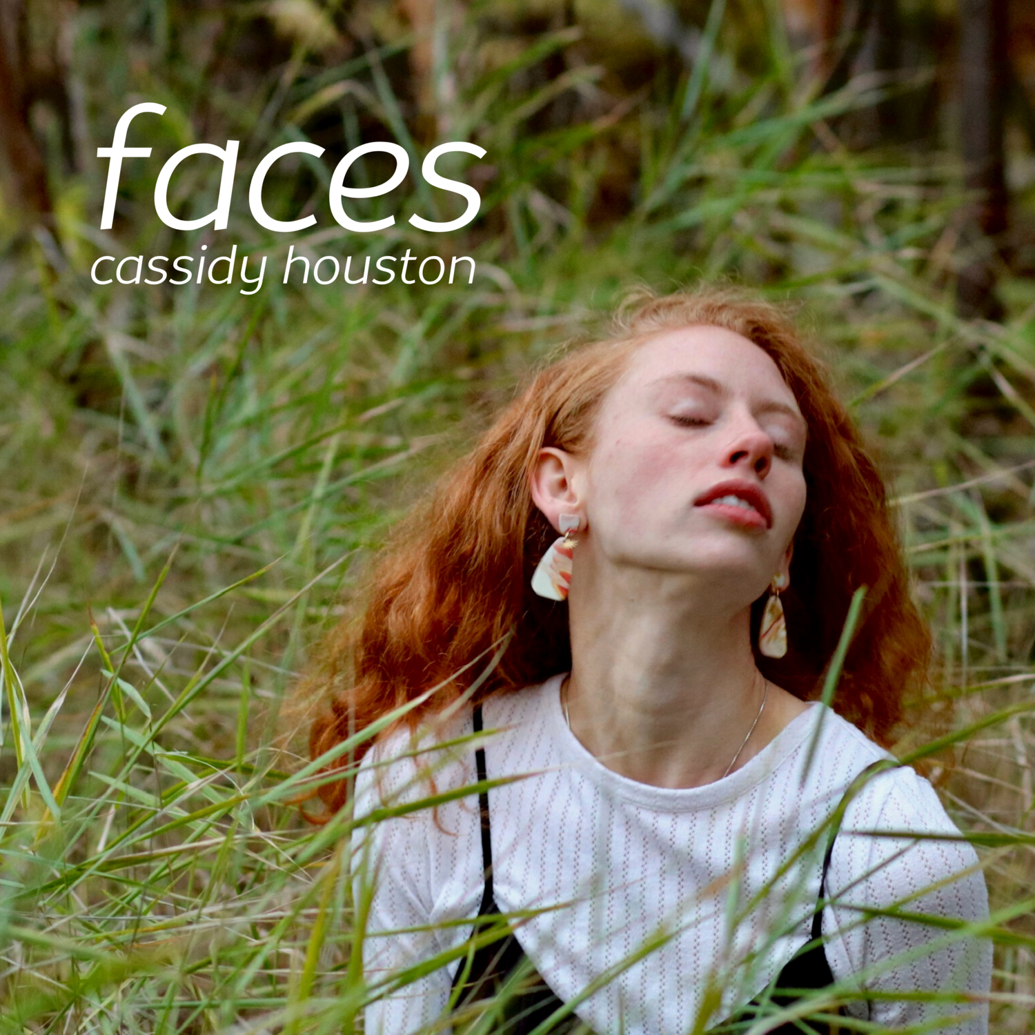 faces: red rock & area pick-up