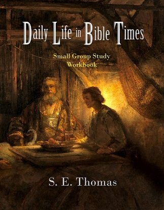 Daily Life in-Bible Times: Small Group Study (Workbook)
