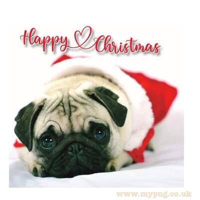 Cute Pug Christmas Cards