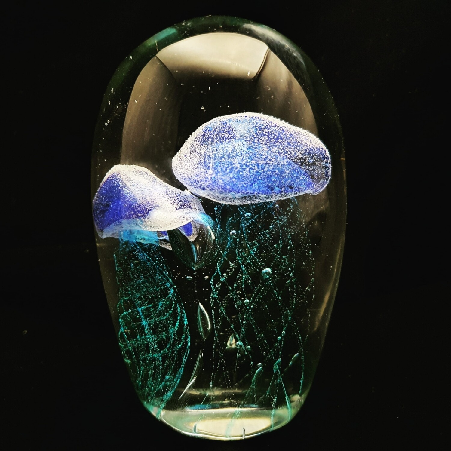 Blue Twin Jellyfish* Glow in the Dark