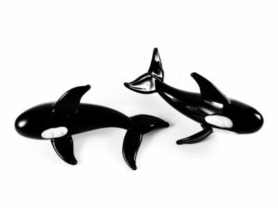 Small Orca *