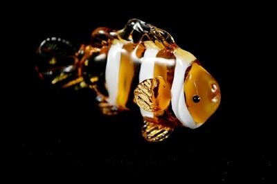 ClownFish -Nemo-