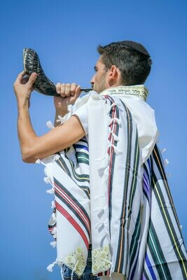 JOSEPH -Large Tallit (Prayer Shawl)