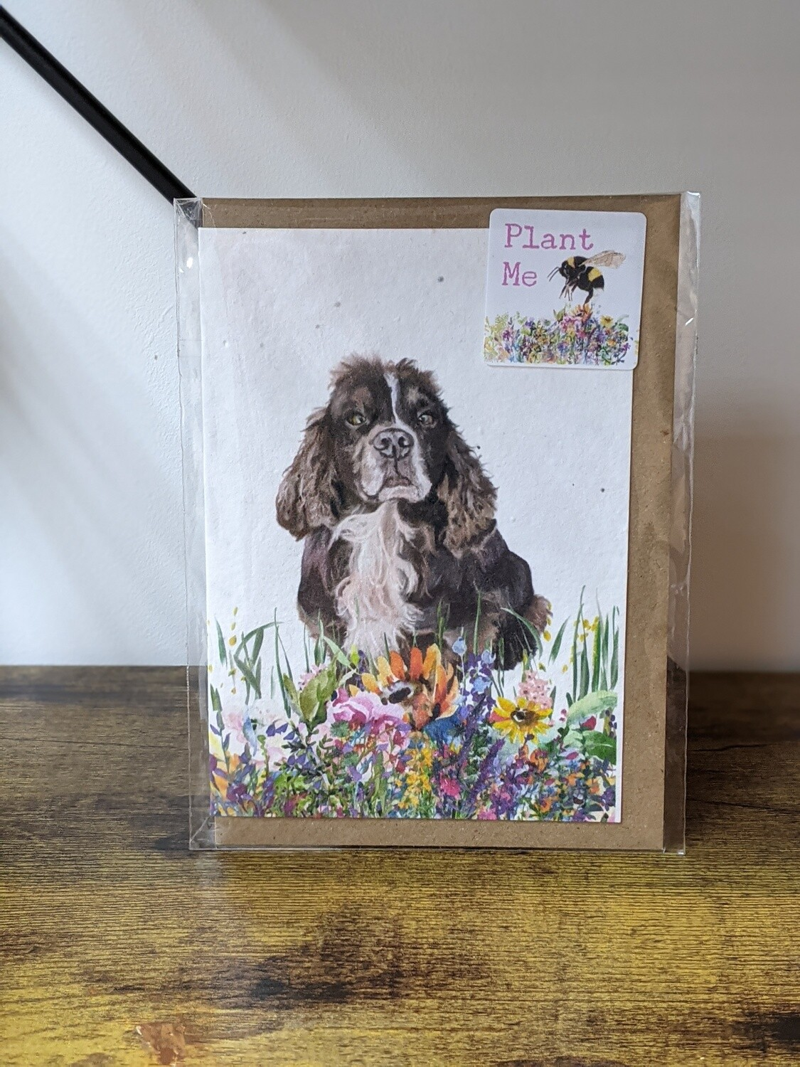 The Goat soap company seeded occasion cards, lots of designs!