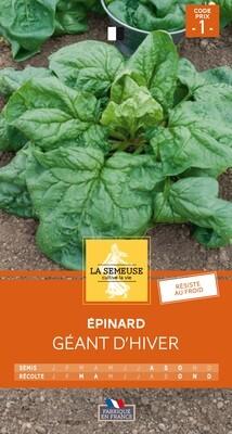 EPINARD GEANT D'HIVER