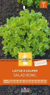LAITUE A COUPER SALAD BOWL