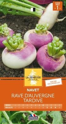 NAVET RAVE D'AUVERGNE TARDIVE