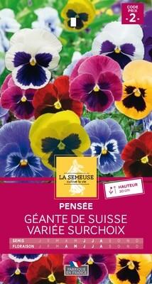 PENSEE GEANTE DE SUISSE VARIEE SURCHOIX