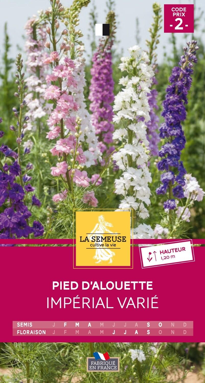 PIED D'ALOUETTE IMPERIAL VARIE