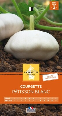 COURGETTE PATISSON BLANC
