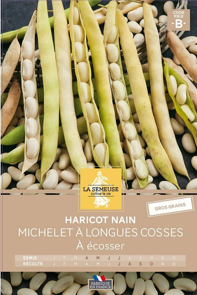 HARICOT MICHELET A LONGUES COSSES NAIN A ECOSSER