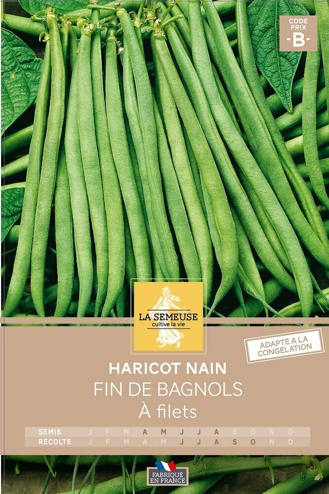 HARICOT FIN DE BAGNOLS NAIN FILETS