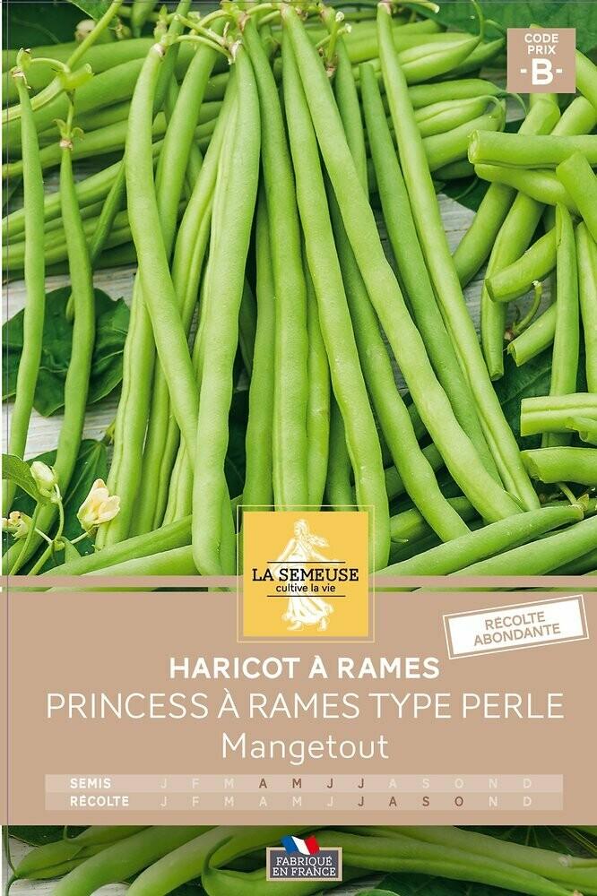 HARICOT PRINCESS TYPE PERLE A RAMES