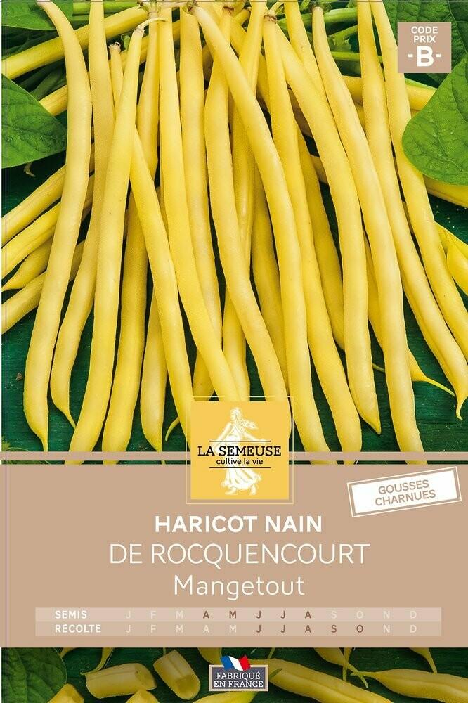 HARICOT DE ROCQUENCOURT NAIN MGT