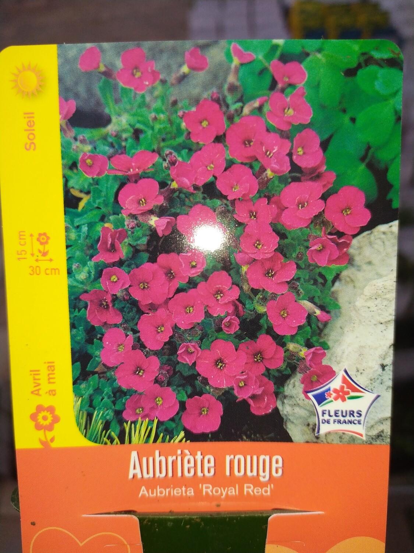AUBRIETE ROUGE