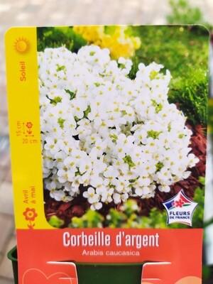 CORBEILLE D'ARGENT