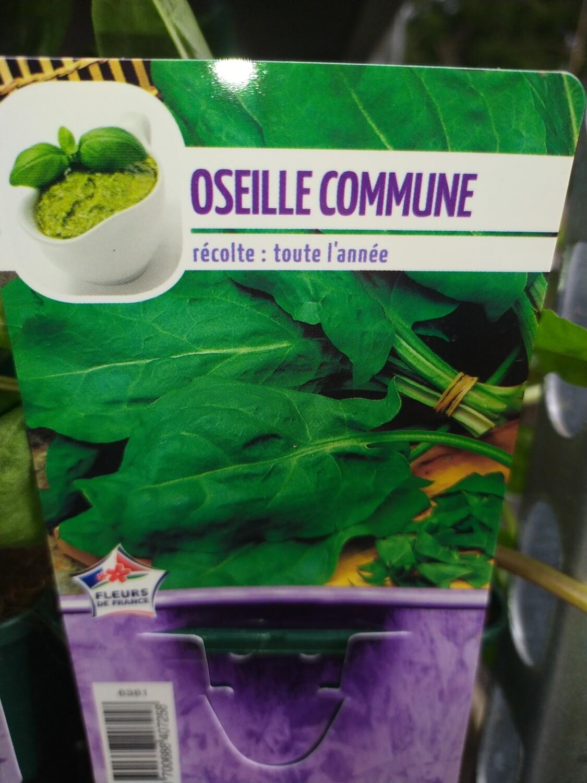 OSEILLE COMMUNE, godet 9cm
