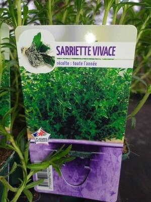 SARIETTE, godet 9cm