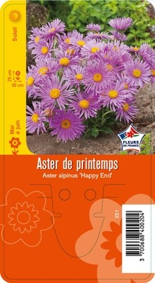 ASTER 'HAPPY END'