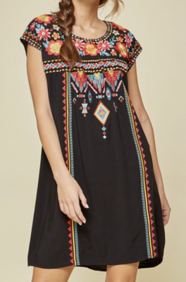 Rosita Black Embroidered Dress